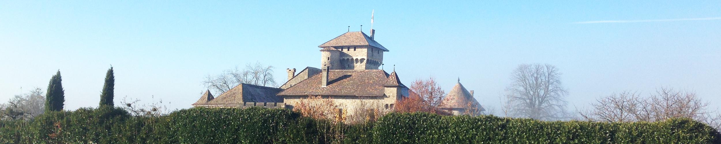 Château d'Avully, Brenthonne